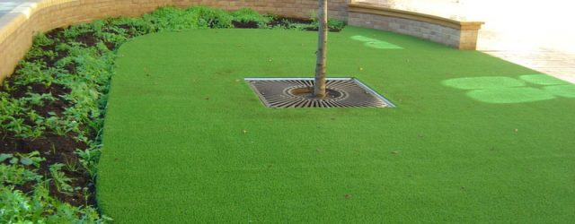 Maintaining Artificial Grass